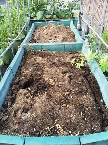 土壌処理6月3日2.jpg