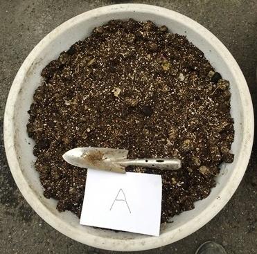 土壌改良9.jpg