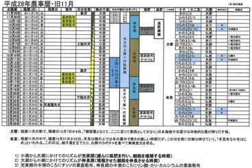 平成28年農事暦旧11月.jpg