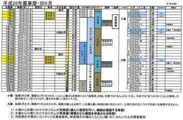 平成28年農事暦旧6月.jpg