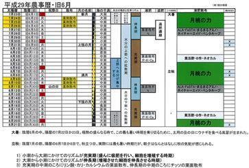 平成29年旧6月農事暦.jpg
