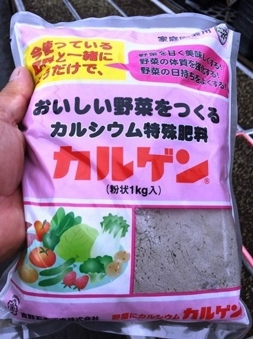 水稲育苗7.jpg