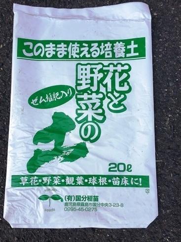 袋でジャガイモ栽培3月21日3.jpg